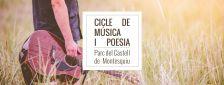 Cicle de música i poesia