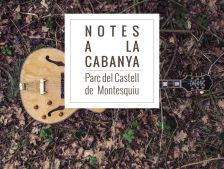 Notes a la Cabanya del Castell
