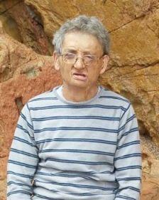 Pedro Salces Gil